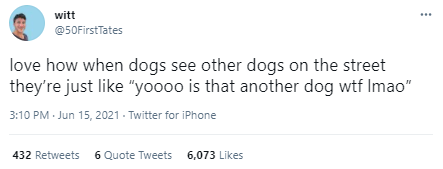 """Font - witt @50FirstTates love how when dogs see other dogs on the street they're just like """"yoo0o is that another dog wtf Imao"""" 3:10 PM Jun 15, 2021 - Twitter for iPhone 432 Retweets 6 Quote Tweets 6,073 Likes"""