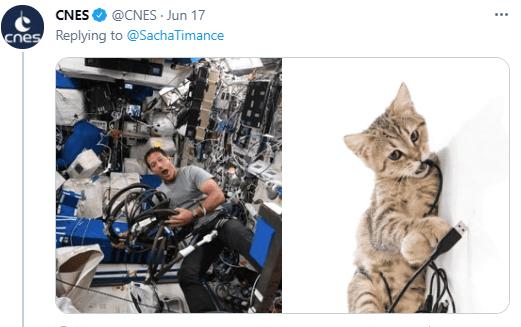 Cat - CNES O @CNES Jun 17 cnes Replying to @SachaTimance
