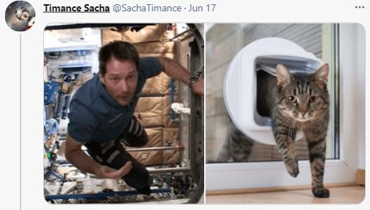 Cat - Timance Sacha @SachaTimance · Jun 17