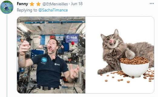 Cat - Fanny ** @EtMerveilles · Jun 18 Replying to @SachaTimance Cesa