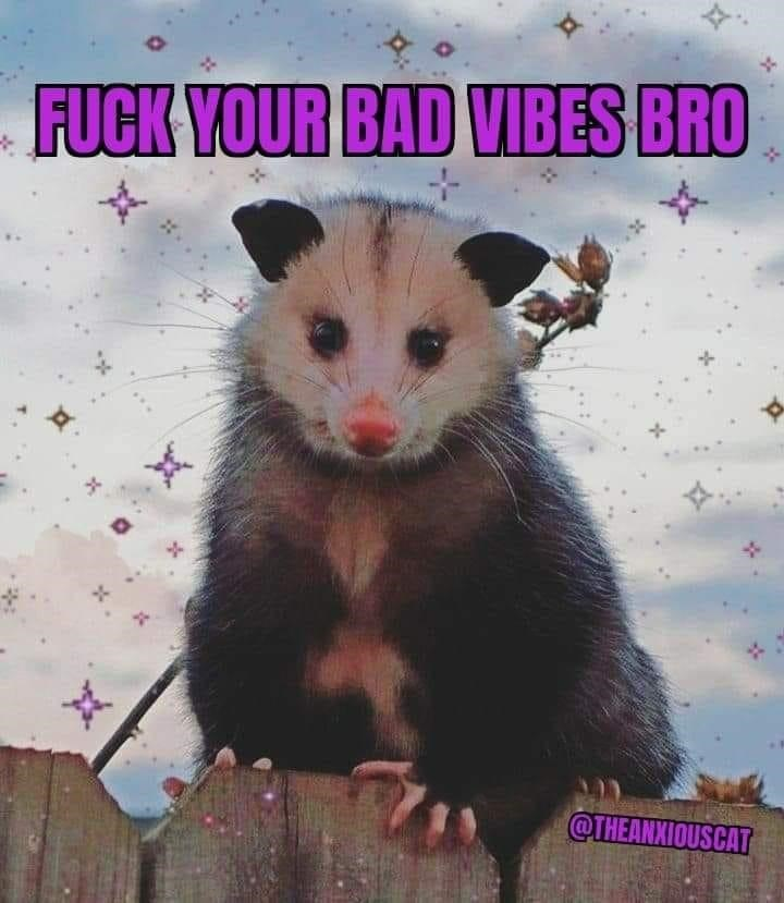 Plant - FUCK YOUR BAD VIBES BRO @THEANXIOUSCAT