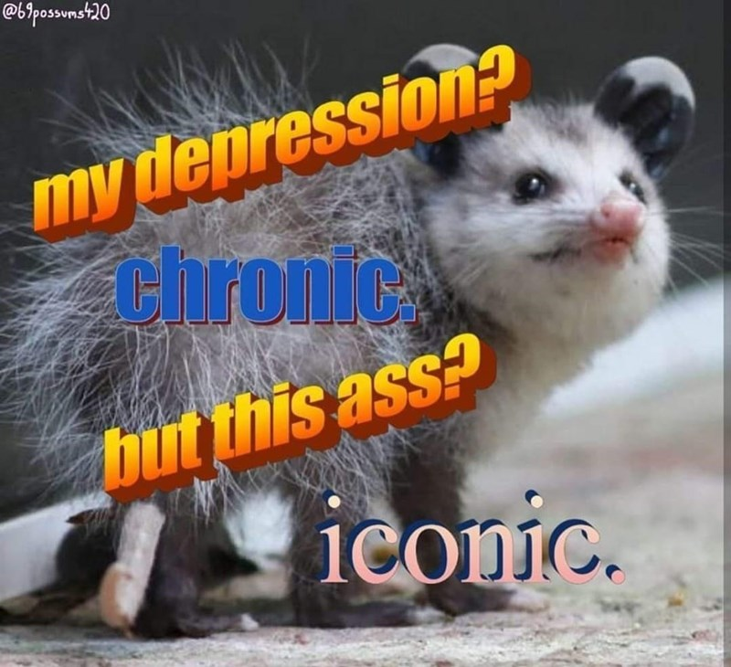 Organism - @bipossvmst20 my depression? Chronic hut this ass? ieonic.