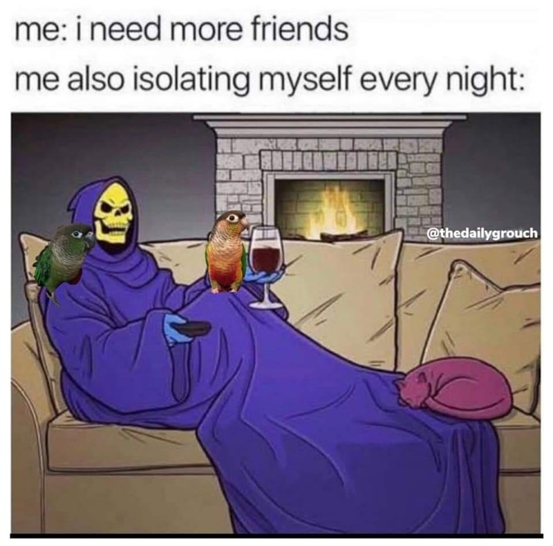 Cartoon - me: i need more friends me also isolating myself every night: @thedailygrouch
