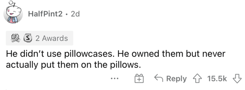 Rectangle - HalfPint2 · 2d 3 2 Awards He didn't use pillowcases. He owned them but never actually put them on the pillows. G Reply 15.5k ...