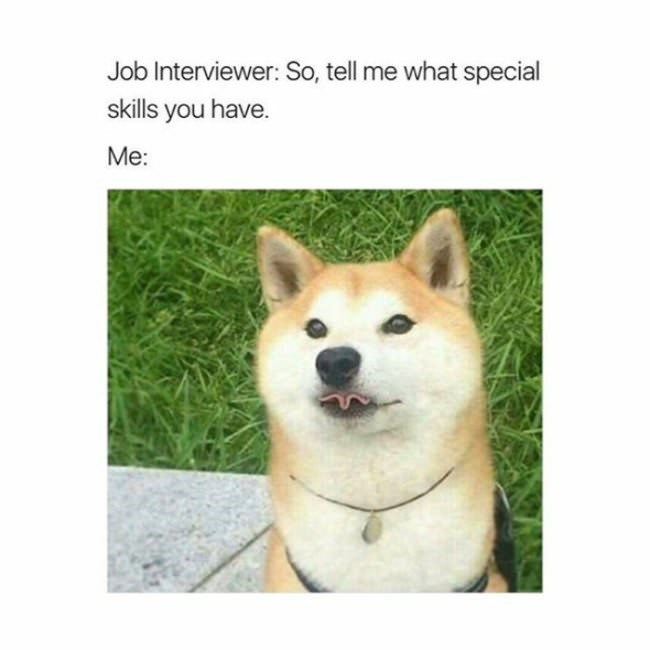 Dog - Job Interviewer: So, tell me what special skills you have. Me: