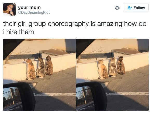 Photograph - your mom @DayDreamingRiot Follow their girl group choreography is amazing how do i hire them