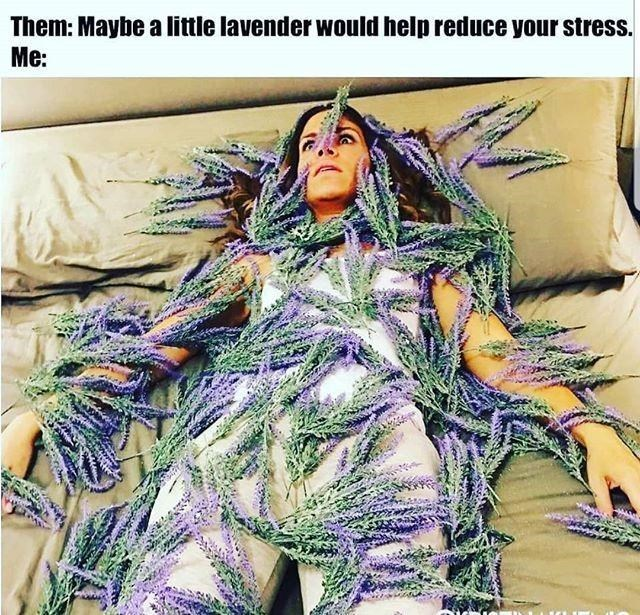 Textile - Them: Maybe a little lavender would help reduce your stress. Me: