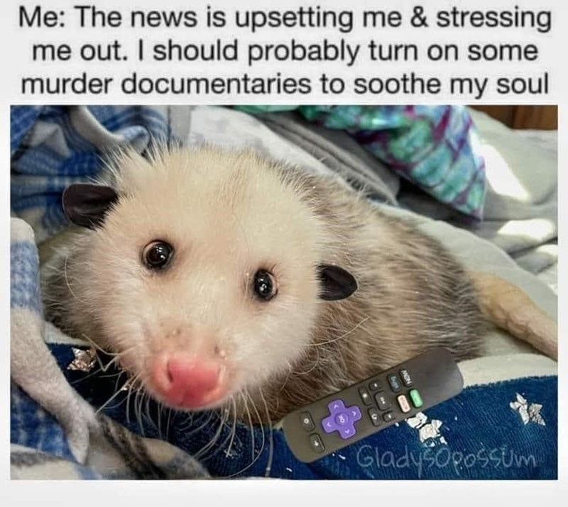Vertebrate - Me: The news is upsetting me & stressing me out. I should probably turn on some murder documentaries to soothe my soul GladySOpossum