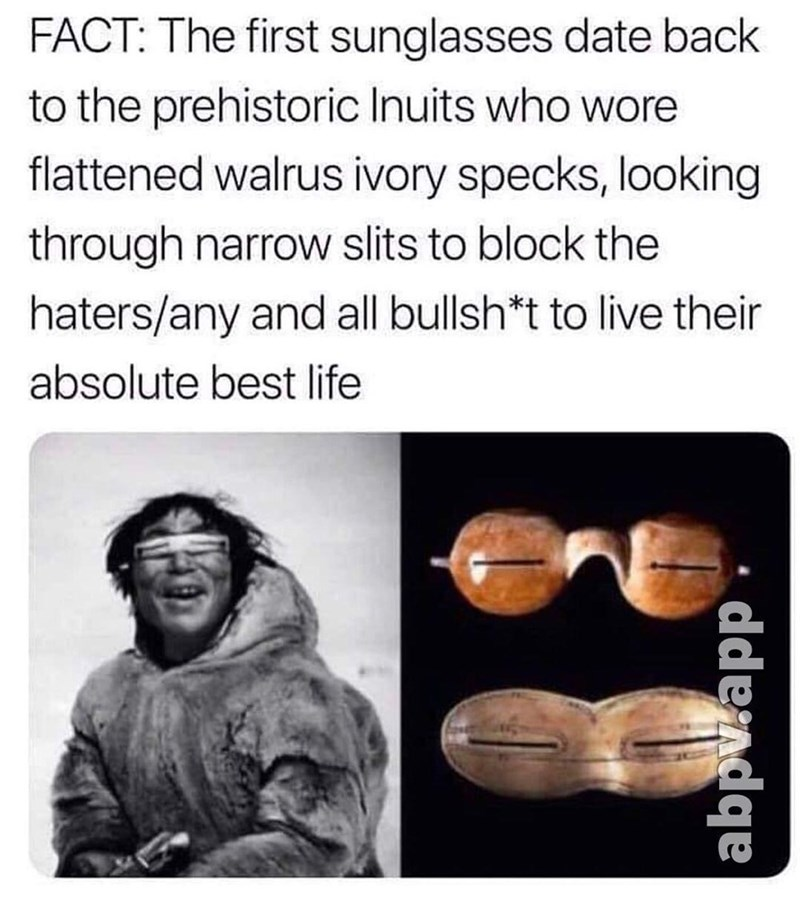 Chin - FACT: The first sunglasses date back to the prehistoric Inuits who wore flattened walrus ivory specks, looking through narrow slits to block the haters/any and all bullsh*t to live their absolute best life ddendqe