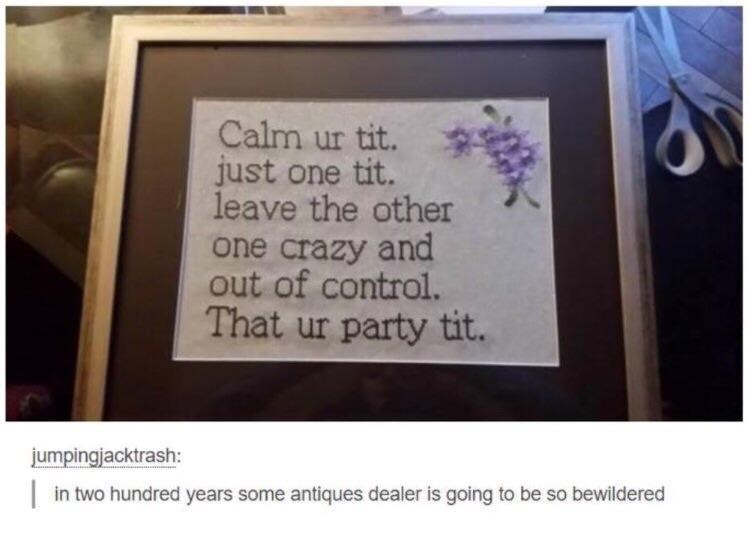 Rectangle - Calm ur tit. just one tit. leave the other one crazy and out of control. That ur party tit. jumpingjacktrash:  in two hundred years some antiques dealer is going to be so bewildered