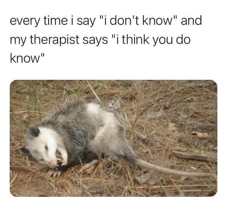 """Organism - every time i say """"i don't know"""" and my therapist says """"i think you do know"""""""
