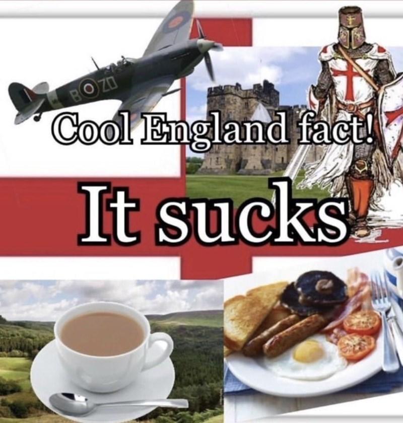Tableware - BOZO Cool England fact! It sucks T- KS