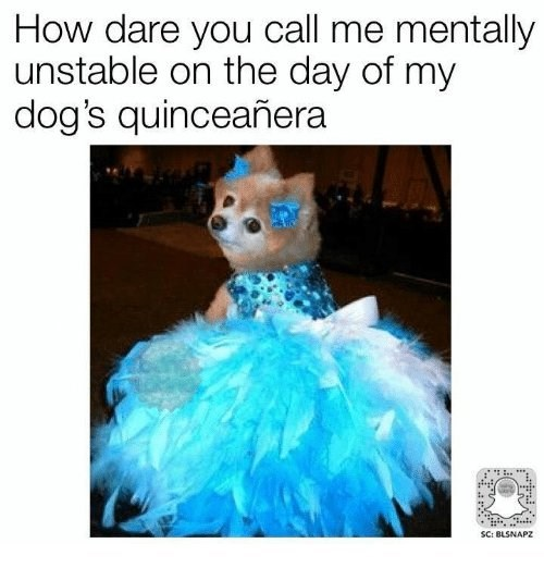Product - How dare you call me mentally unstable on the day of my dog's quinceañera SC: BLSNAPZ