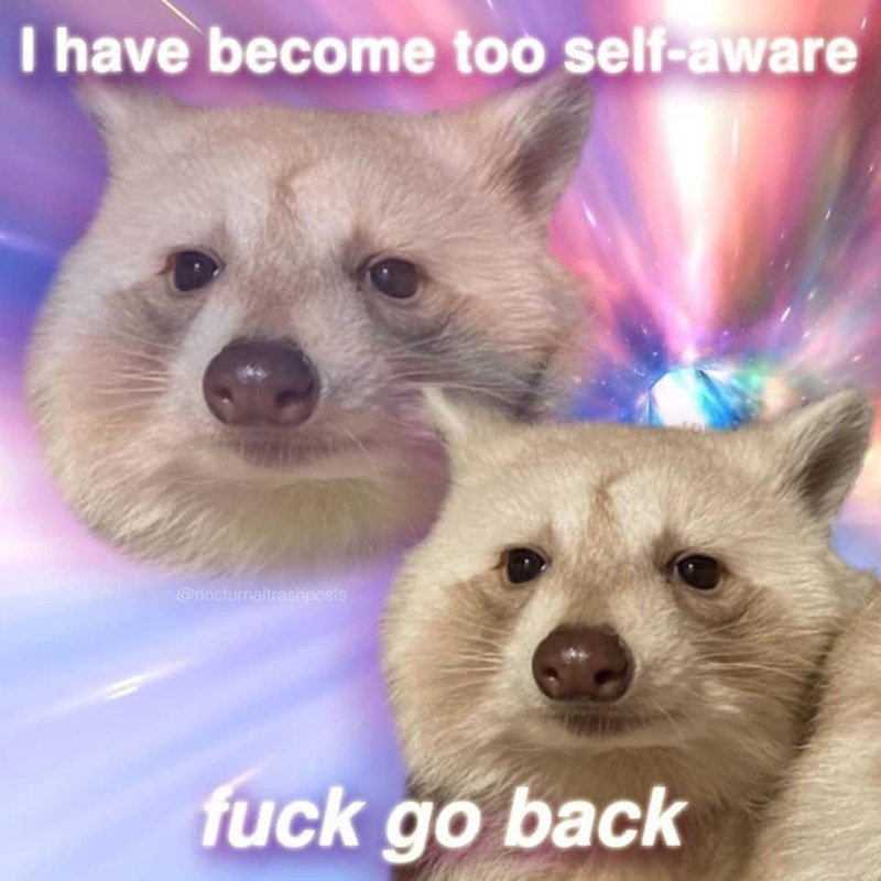 Carnivore - I have become too self-aware @nocturnaltrashposts fuck go back
