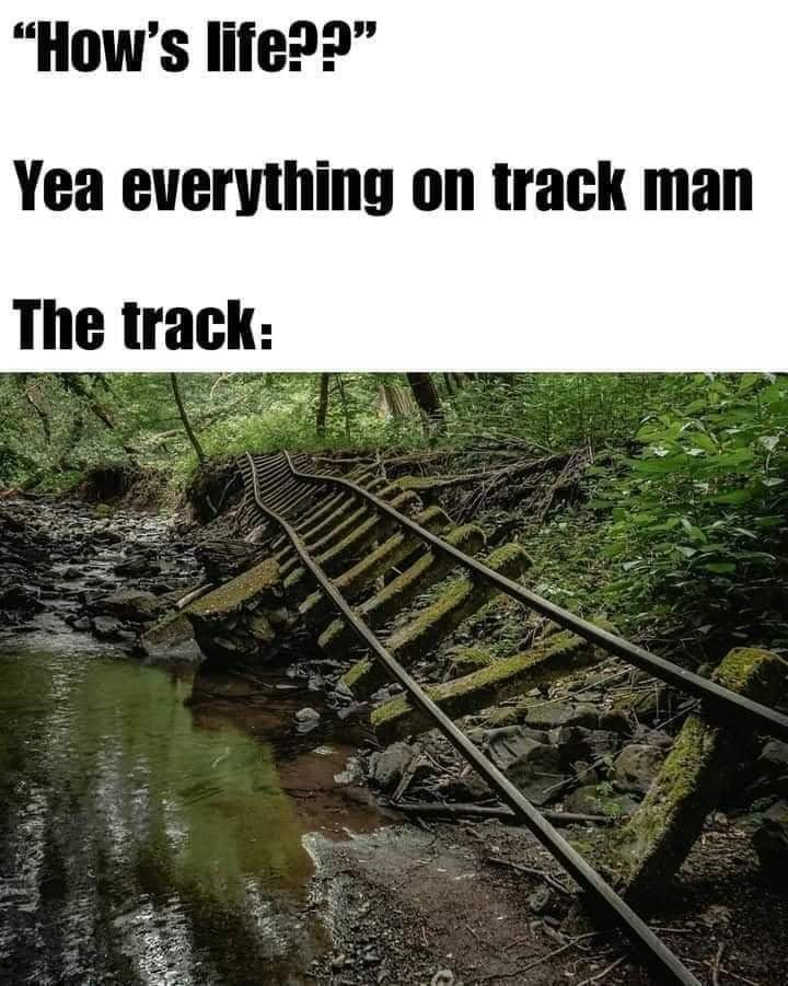 """Plant - """"How's life??"""" Yea everything on track man The track:"""