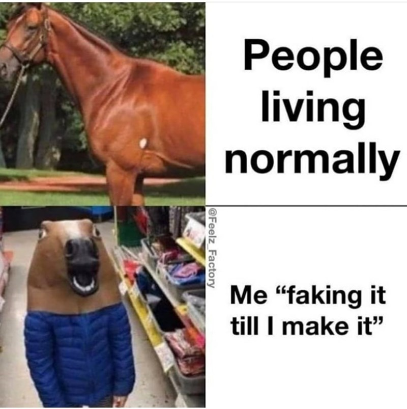 """Horse - le People living normally Me """"faking it till I make it"""" 