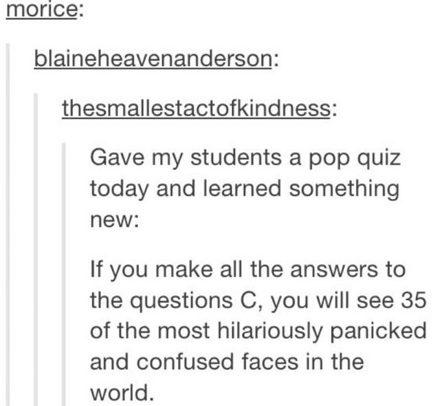 Font - morice: blaineheavenanderson: thesmallestactofkindness: Gave my students a pop quiz today and learned something new: If you make all the answers to the questions C, you will see 35 of the most hilariously panicked and confused faces in the world.
