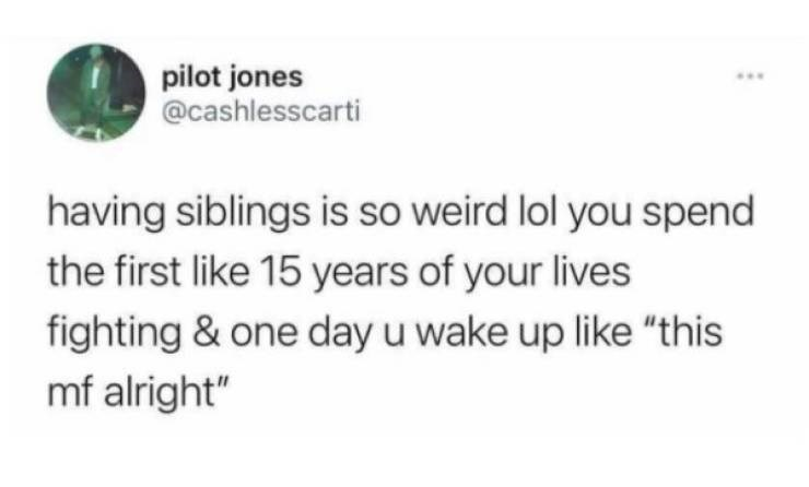"""Plant - pilot jones @cashlesscarti ... having siblings is so weird lol you spend the first like 15 years of your lives fighting & one day u wake up like """"this mf alright"""""""
