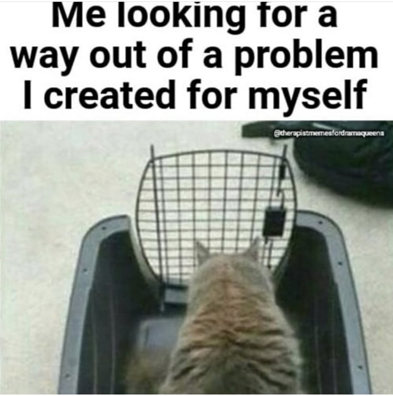 Vertebrate - Me looking for a way out of a problem I created for myself @therapistmemesfardramaqueens