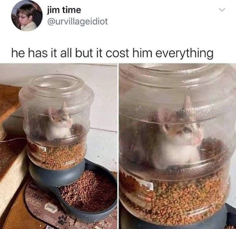 Food - jim time @urvillageidiot he has it all but it cost him everything JEAT SPOILED jump