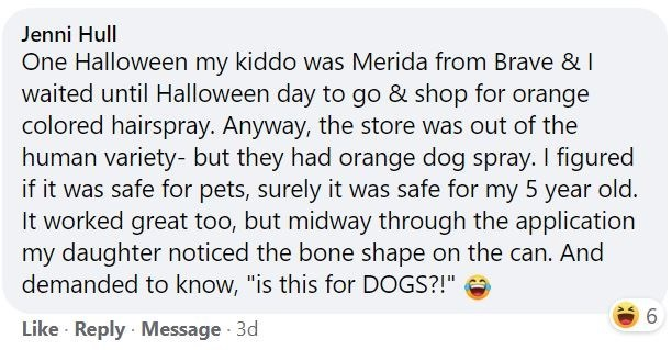 """Font - Jenni Hull One Halloween my kiddo was Merida from Brave & I waited until Halloween day to go & shop for orange colored hairspray. Anyway, the store was out of the human variety- but they had orange dog spray. I figured if it was safe for pets, surely it was safe for my 5 year old. It worked great too, but midway through the application my daughter noticed the bone shape on the can. And demanded to know, """"is this for DOGS?!"""" 6. Like · Reply · Message 3d"""