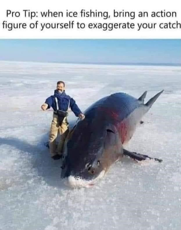 Fin - Pro Tip: when ice fishing, bring an action figure of yourself to exaggerate your catch