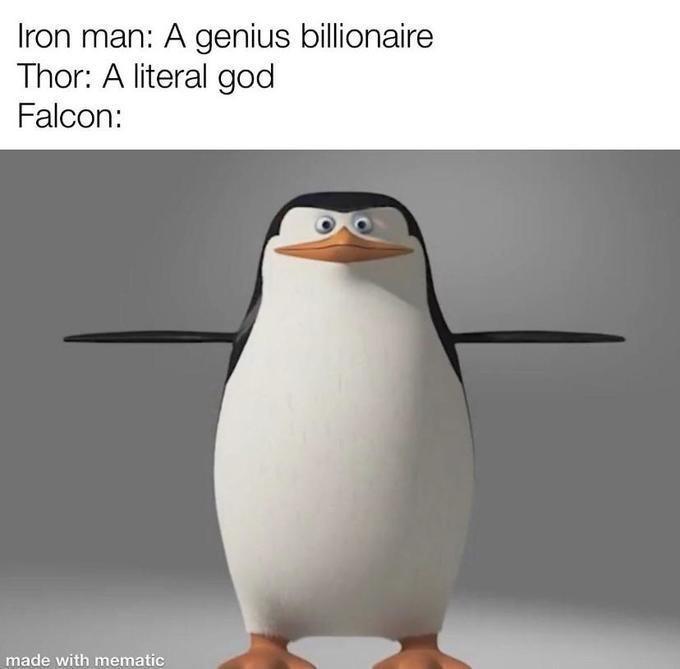 Bird - Iron man: A genius billionaire Thor: A literal god Falcon: made with mematic