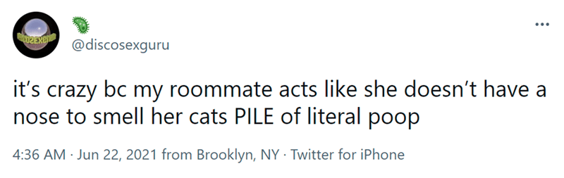 Font - ... @discosexguru it's bc my roommate acts like she doesn't have a crazy nose to smell her cats PILE of literal poop 4:36 AM · Jun 22, 2021 from Brooklyn, NY · Twitter for iPhone