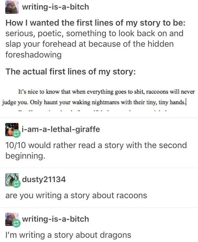 Font - writing-is-a-bitch How I wanted the first lines of my story to be: serious, poetic, something to look back on and slap your forehead at because of the hidden foreshadowing The actual first lines of my story: It's nice to know that when everything goes to shit, raccoons will never judge you. Only haunt your waking nightmares with their tiny, tiny hands. i-am-a-lethal-giraffe 10/10 would rather read a story with the second beginning. dusty21134 are you writing a story about racoons writing-
