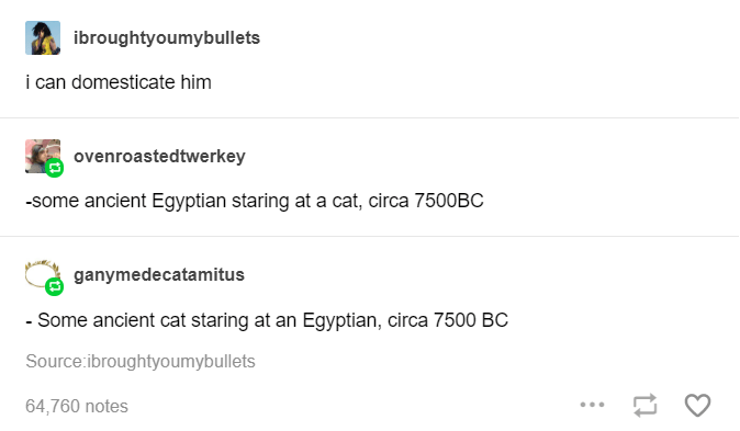 Rectangle - ibroughtyoumybullets i can domesticate him ovenroastedtwerkey -some ancient Egyptian staring at a cat, circa 7500BC ganymedecatamitus - Some ancient cat staring at an Egyptian, circa 7500 Bc Source:ibroughtyoumybullets 64,760 notes ...