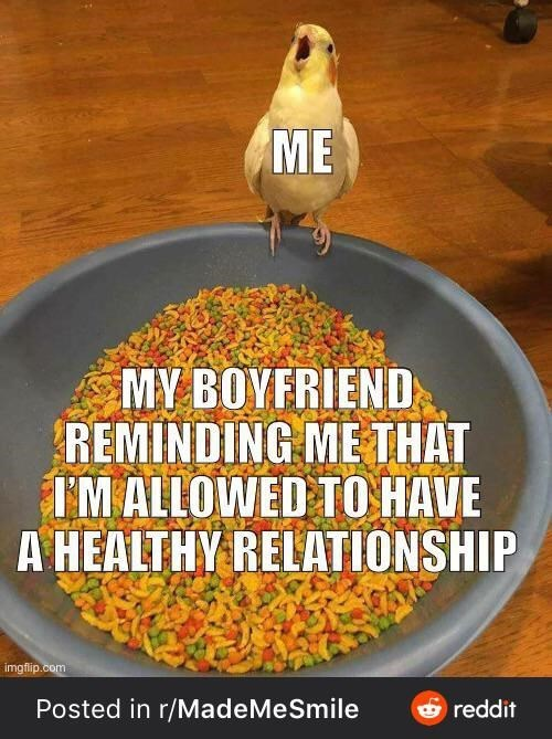 Ingredient - ME MY BOYFRIEND REMINDING ME THAT I'M ALLOWED TO HAVE A HEALTHY RELATIONSHIP imgflip.com Posted in r/MadeMeSmile 6 reddit