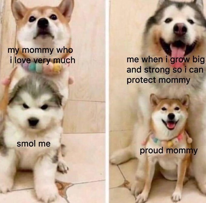 Nose - my mommy who i love very much me when i grow big and strong so i can protect mommy smol me proud mommy