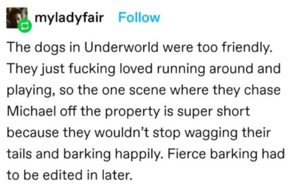 Water - myladyfair Follow The dogs in Underworld were too friendly. They just fucking loved running around and playing, so the one scene where they chase Michael off the property is super short because they wouldn't stop wagging their tails and barking happily. Fierce barking had to be edited in later.