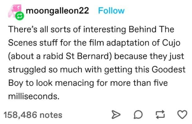 Font - moongalleon22 Follow There's all sorts of interesting Behind The Scenes stuff for the film adaptation of Cujo (about a rabid St Bernard) because they just struggled so much with getting this Goodest Boy to look menacing for more than five milliseconds. 158,486 notes