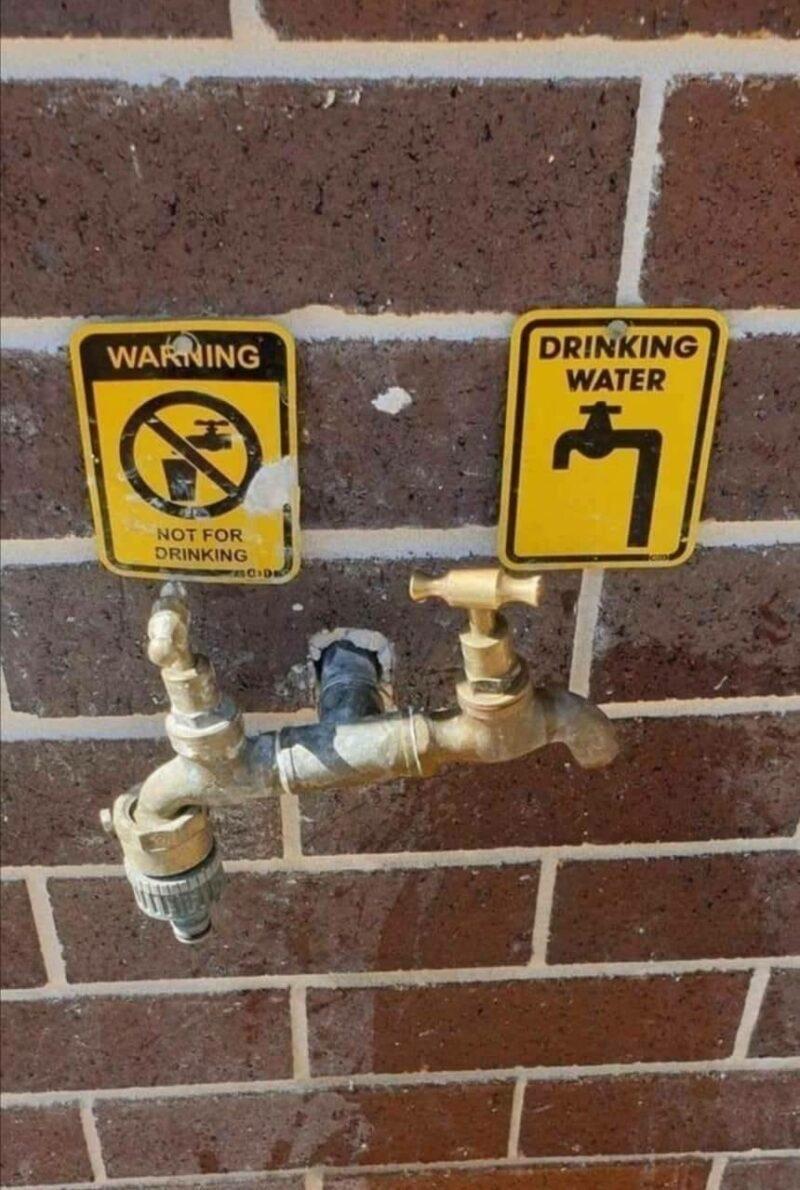 Vertebrate - WARNING DRINKING WATER NOT FOR DRINKING