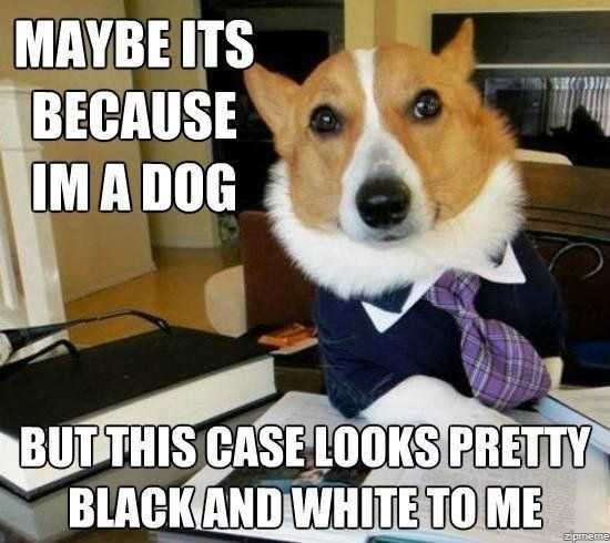 Dog - MAYBE ITS BECAUSE IM A DOG BUT THIS CASE LOOKS PRETTY BLACKAND WHITE TO ME