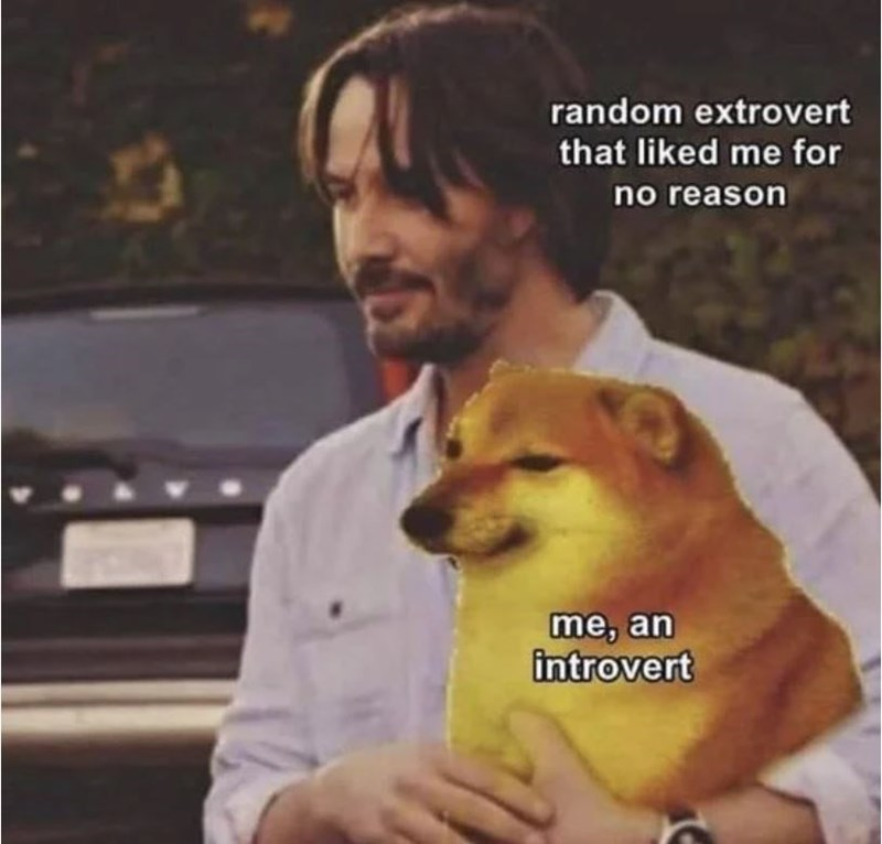 Watch - random extrovert that liked me for no reason me, an introvert