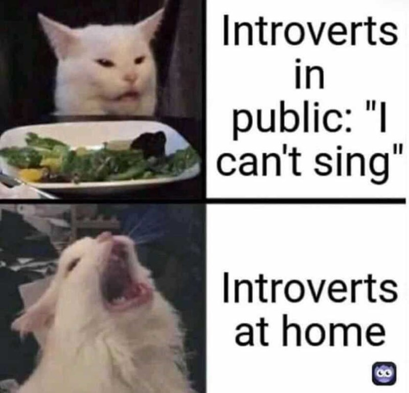 """Facial expression - Introverts in public: """"I can't sing"""" Introverts at home"""
