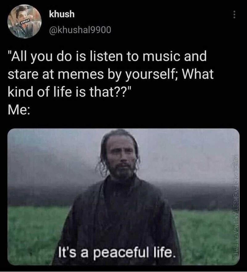 """Vertebrate - khush ERROR @khushal9900 """"All you do is listen to music and stare at memes by yourself; What kind of life is that??"""" Me: It's a peaceful life. ENERADE AMOMSSTARIMOATMEME"""
