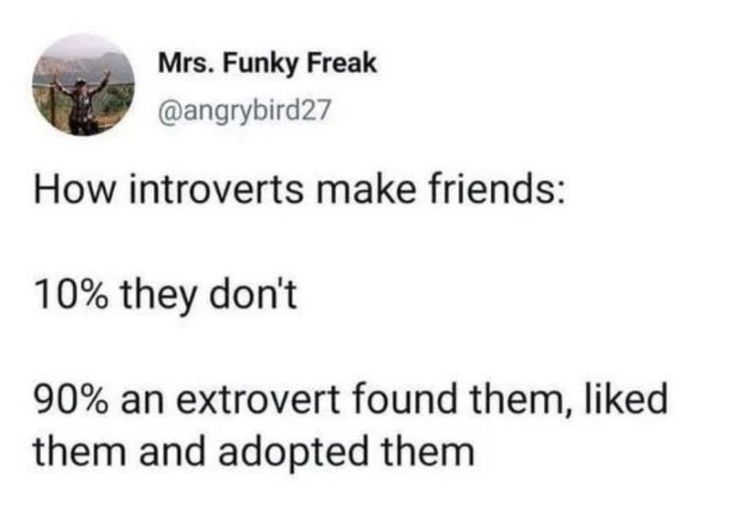 Font - Mrs. Funky Freak @angrybird27 How introverts make friends: 10% they don't 90% an extrovert found them, liked them and adopted them