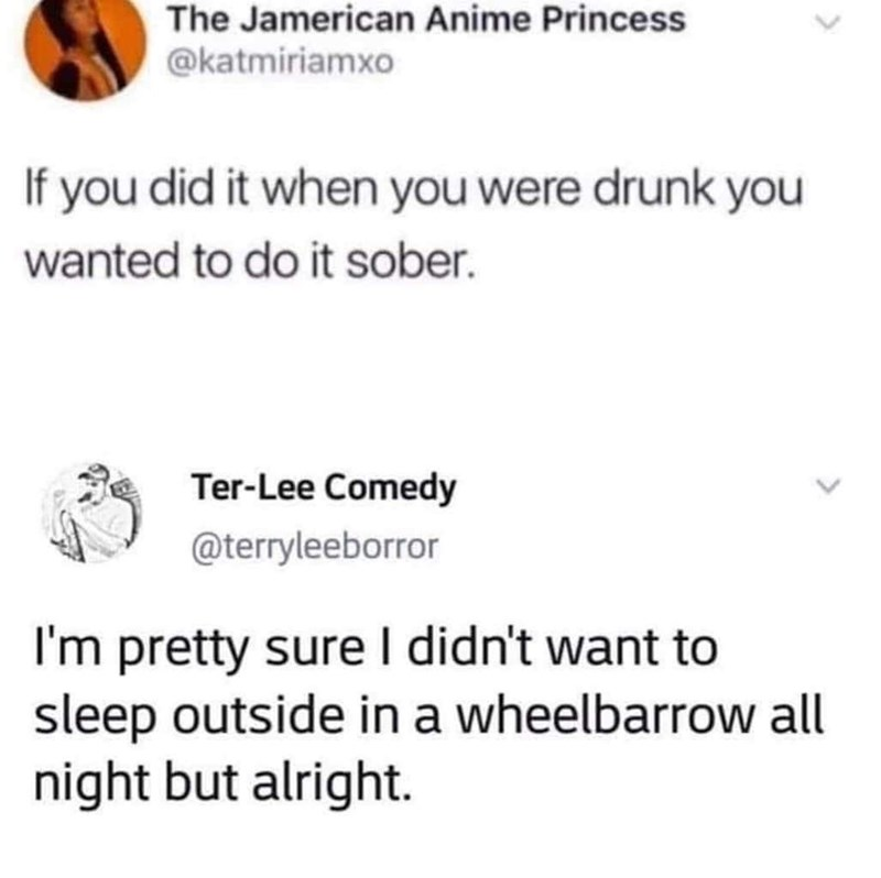 Font - The Jamerican Anime Princess @katmiriamxo If you did it when you were drunk you wanted to do it sober. Ter-Lee Comedy @terryleeborror I'm pretty sure I didn't want to sleep outside in a wheelbarrow all night but alright.