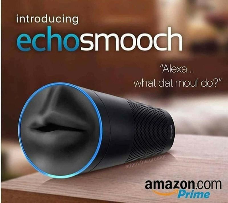 "Audio equipment - introducing echosmooch ""Alexa... what dat mouf do?"" adam the.creator amazon.com Prime"