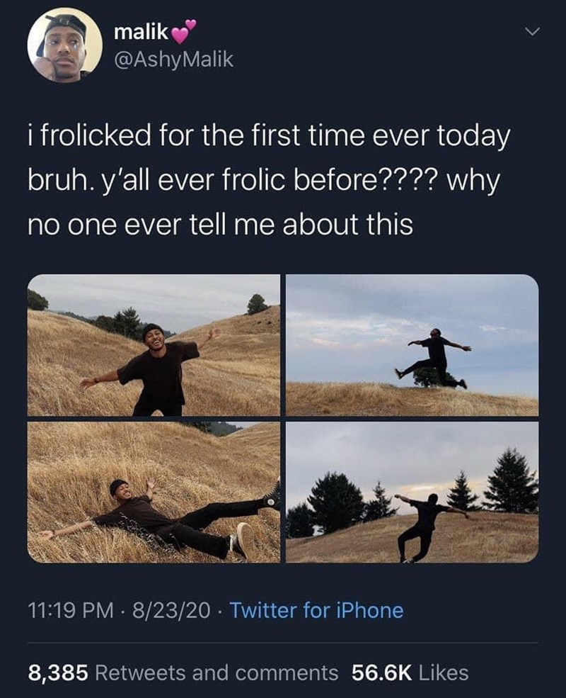Vertebrate - malik @AshyMalik i frolicked for the first time ever today bruh. y'all ever frolic before???? why no one ever tell me about this 11:19 PM · 8/23/20 · Twitter for iPhone 8,385 Retweets and comments 56.6K Likes