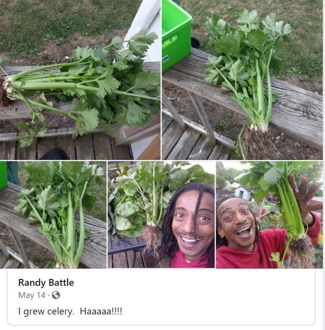 Smile - Randy Battle May 14 0 I grew celery. Haaaaa!!!!