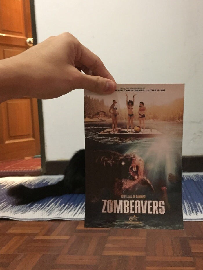 Hand - N PIE CABIN FEVER A THE RING YOU'LL ALL BE DAMMED: ZOMBEAVERS eic