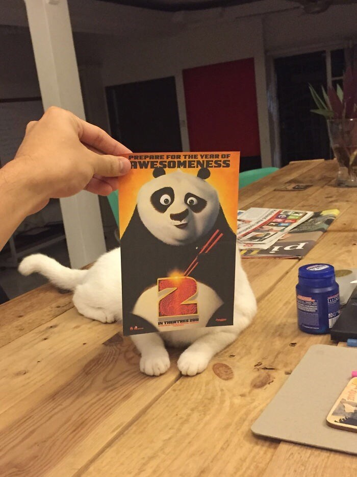 Panda - PREPARE FOR THE YERR OF AWESOMENESS mes IN THETRES 20