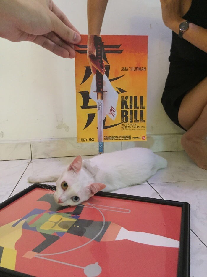Yellow - UMA THURMAN KILL BILL THE 4TH FILM BY OUENTIN TARANTINO HRAMAX CRCV) DVD