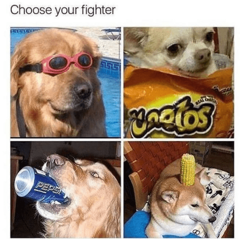 Nose - Choose your fighter PEPS