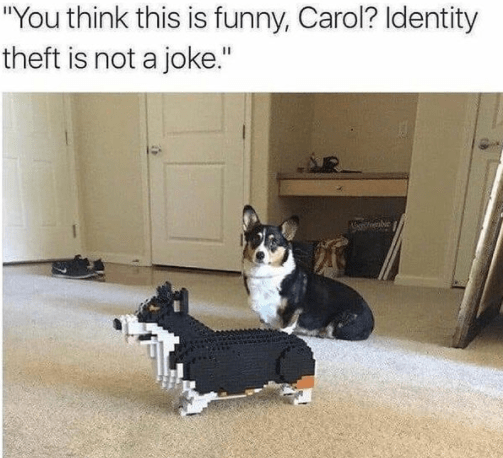 """Dog - """"You think this is funny, Carol? Identity theft is not a joke."""""""