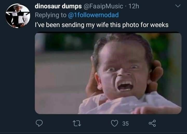 Nose - dinosaur dumps @FaaipMusic 12h Replying to @1followernodad I've been sending my wife this photo for weeks 35